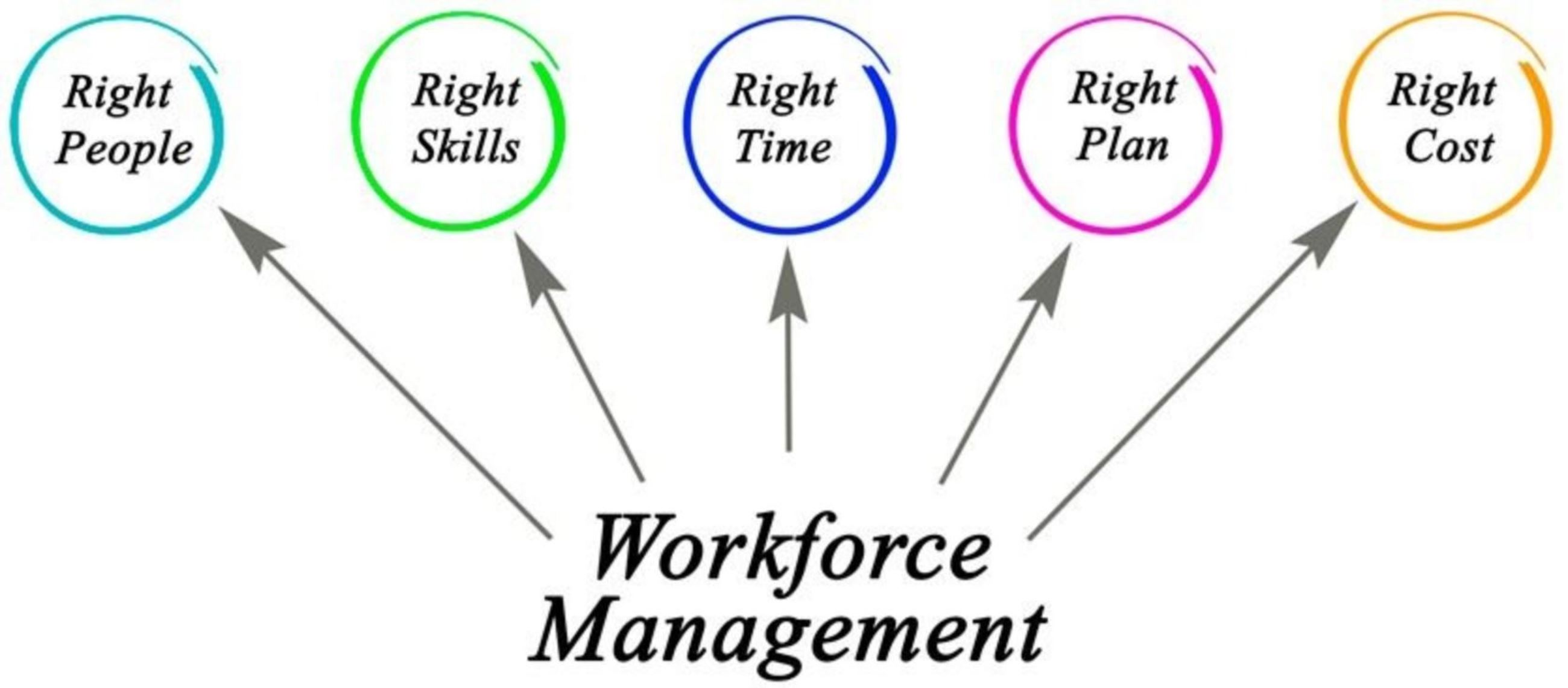 Diagram of Workforce Management, which includes having the right people, with the right skills, at t